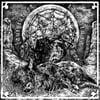 Lautstürmer-Tarantuja/Split