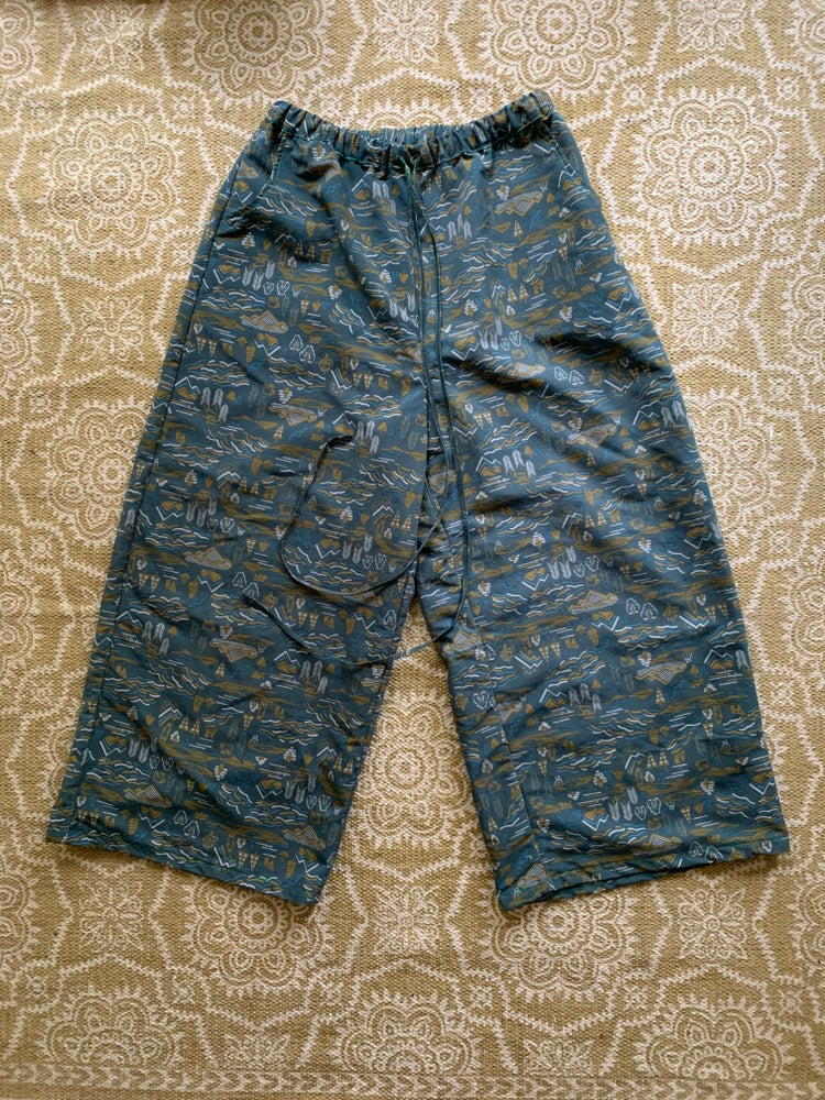 Image of Wild Mountain Zen Spinner Pants
