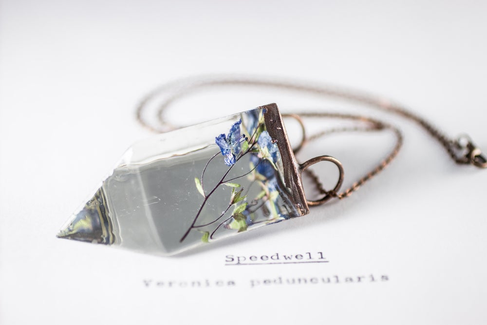 Image of Speedwell (Veronica peduncularis) - Small Copper Prism Necklace #4