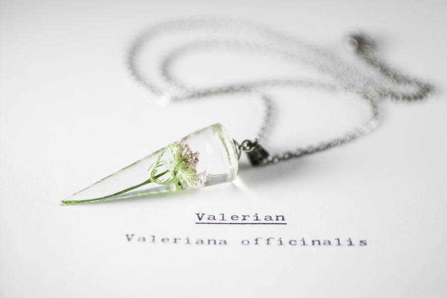 Image of Valerian (Valeriana officinalis) - Conical Pendant #1