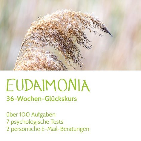 Eudaimonia 36-Wochen-Glückskurs