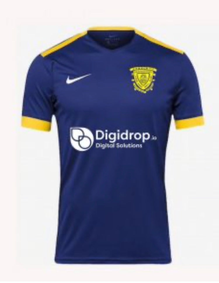Image of Adult only 3rd Shirt 2020/21 Season