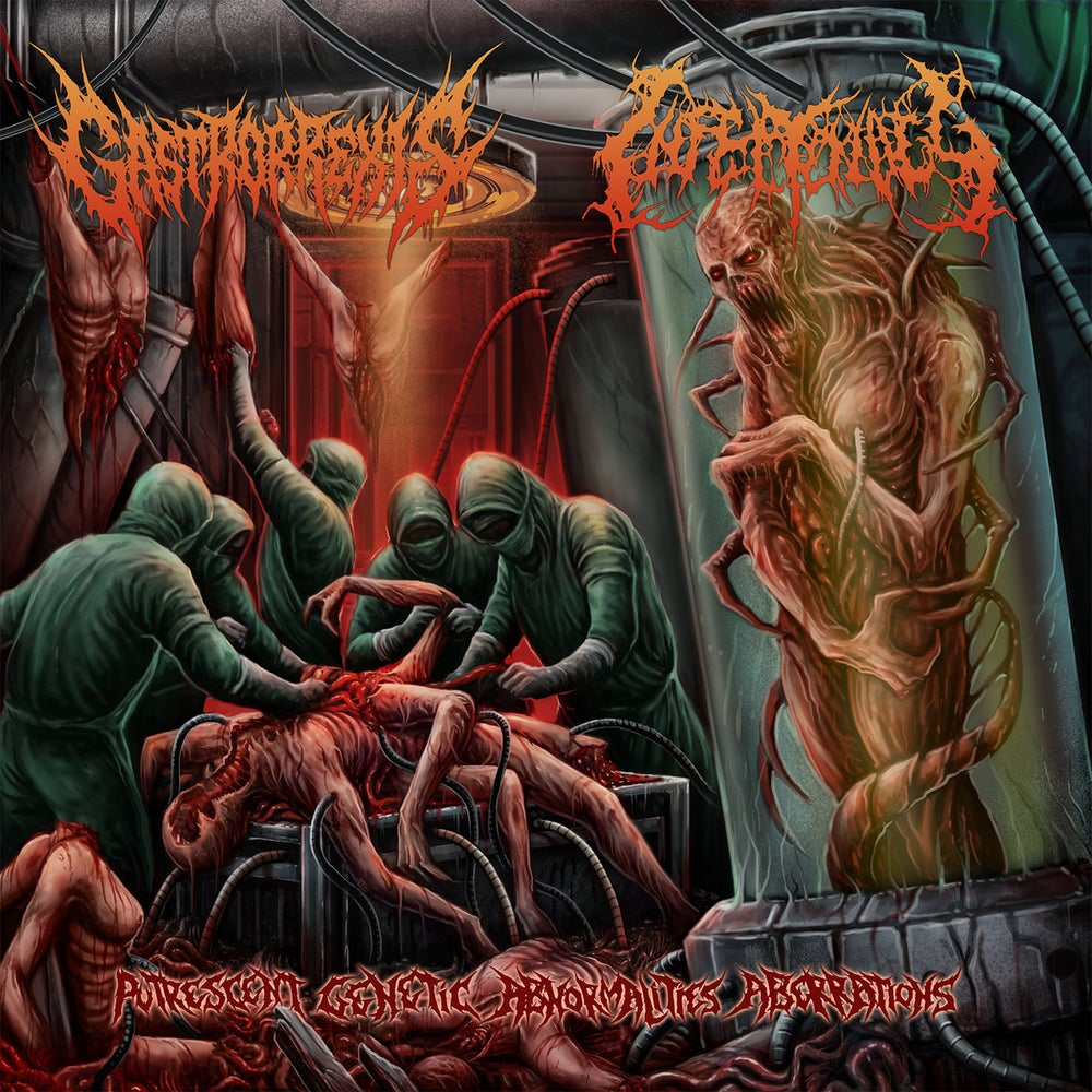 Image of Gastrorrexis / Infectology - Putrescent Genetic Abnormalities Aberrations (Split) CD