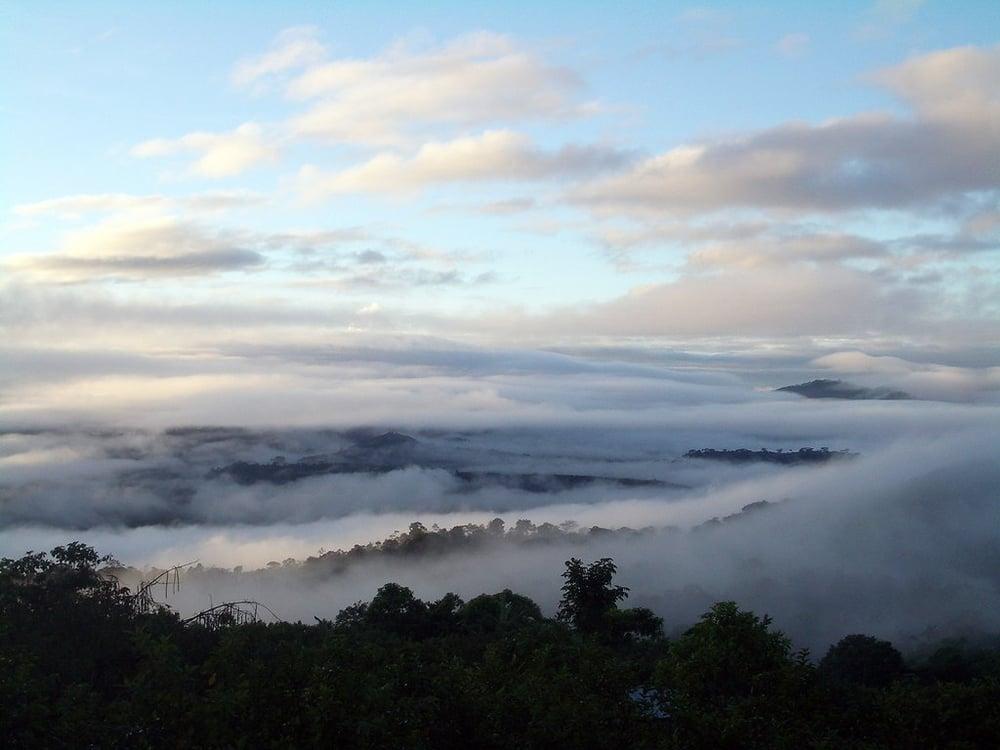 Image of - NICARAGUA - PRODECOOP [Certified Organic, Fair Trade]