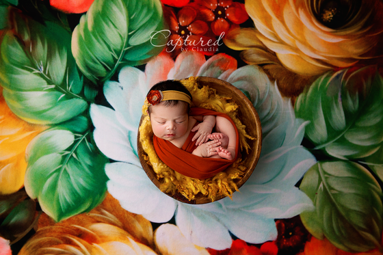 Image of Newborn Mini Session- 30% deposit