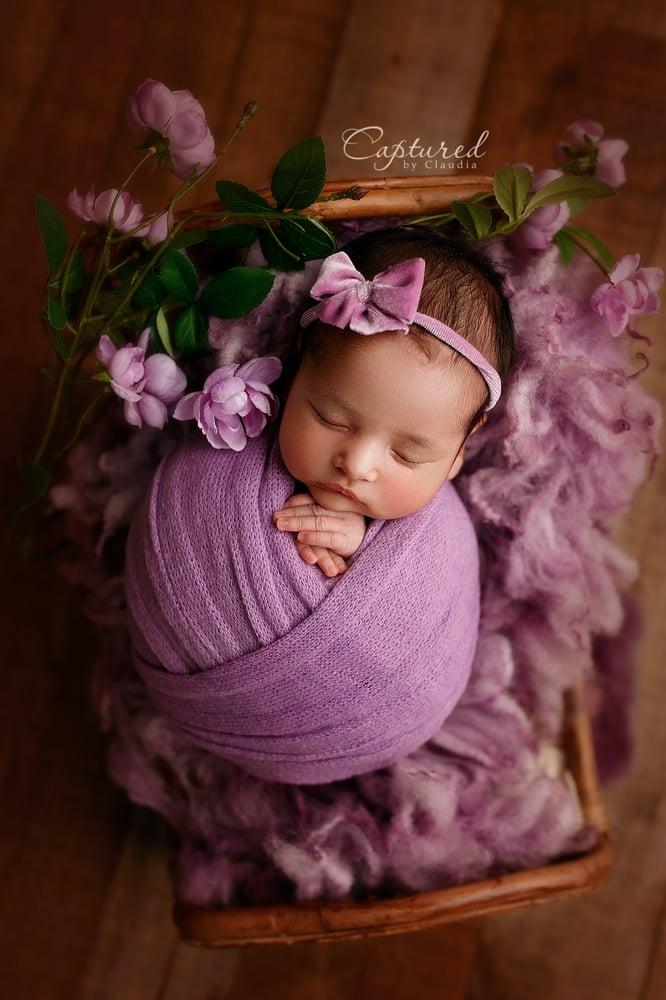 Image of Newborn Mini Session- 30% deposit