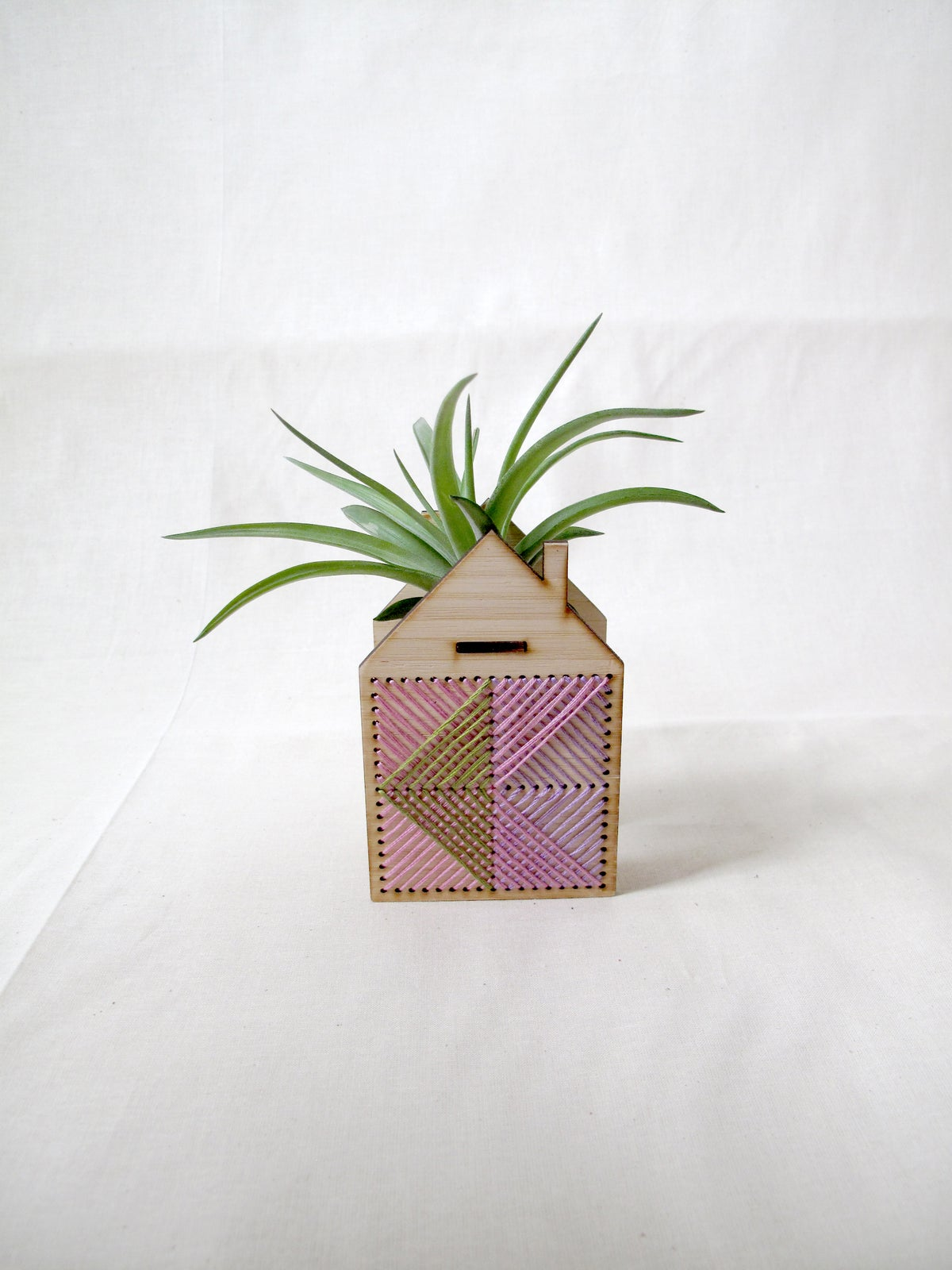 Pink Mini house airplant holder