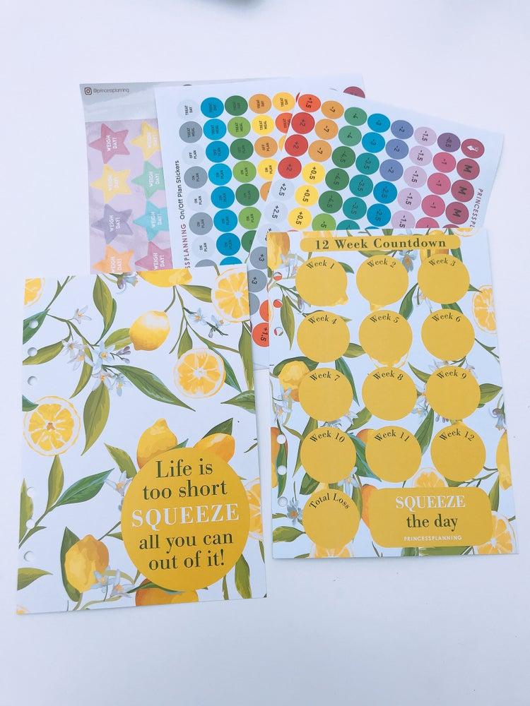 Image of LIFE IS SHORT LEMON ORGANISER REFILL BUNDLE