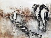 "Image of ""River Crossing"", Taxila, Pakistan"