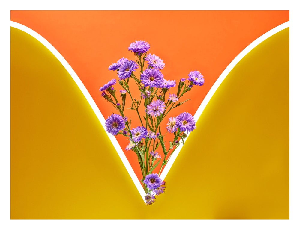 Image of Neon Spring_06