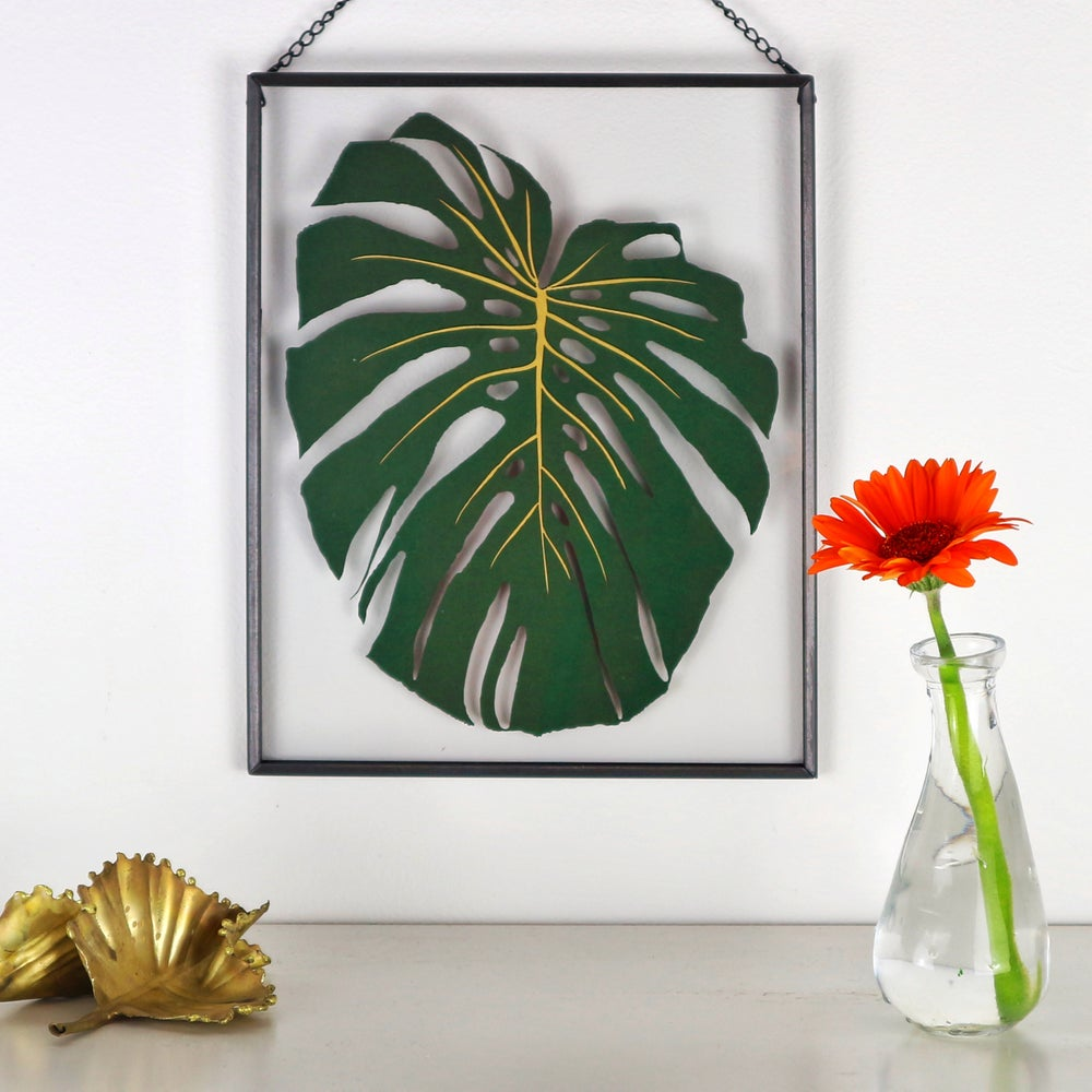 Image of Papercut Monstera Leaf In Clear Frame