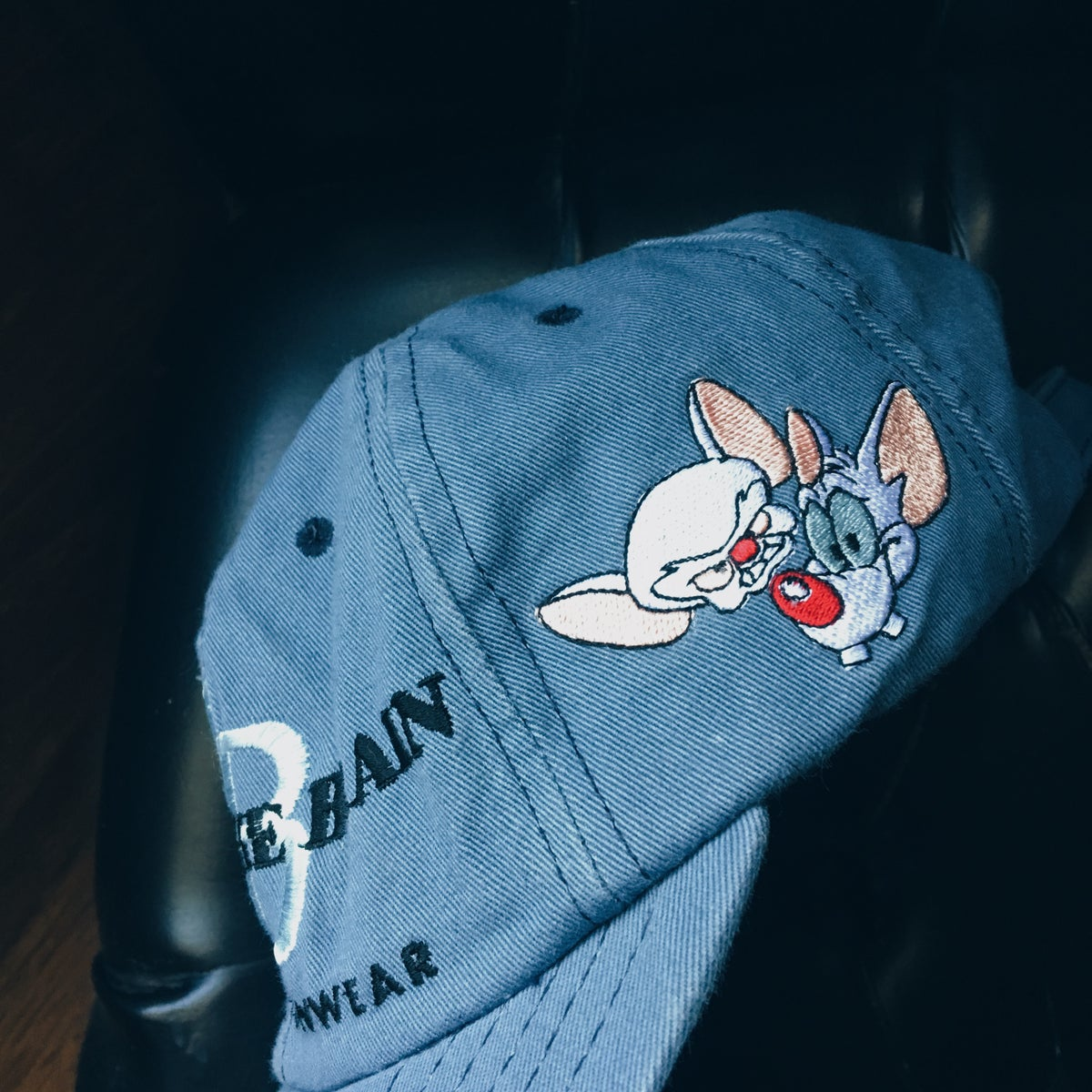Image of Original 1998 Pinky And The Brain Strapback Hat.
