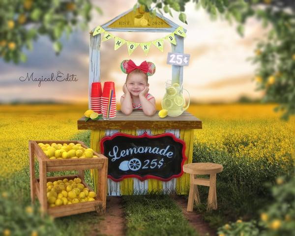 Image of Lemonade Stand Edit