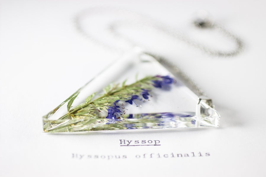 Image of Hyssop (Hyssopus officinalis) - Triangular Pressed Pendant #2