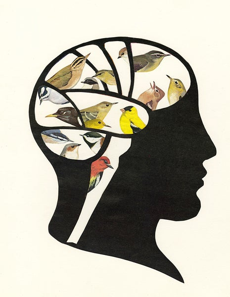Image of Bird Brain. Limited edition collage print.