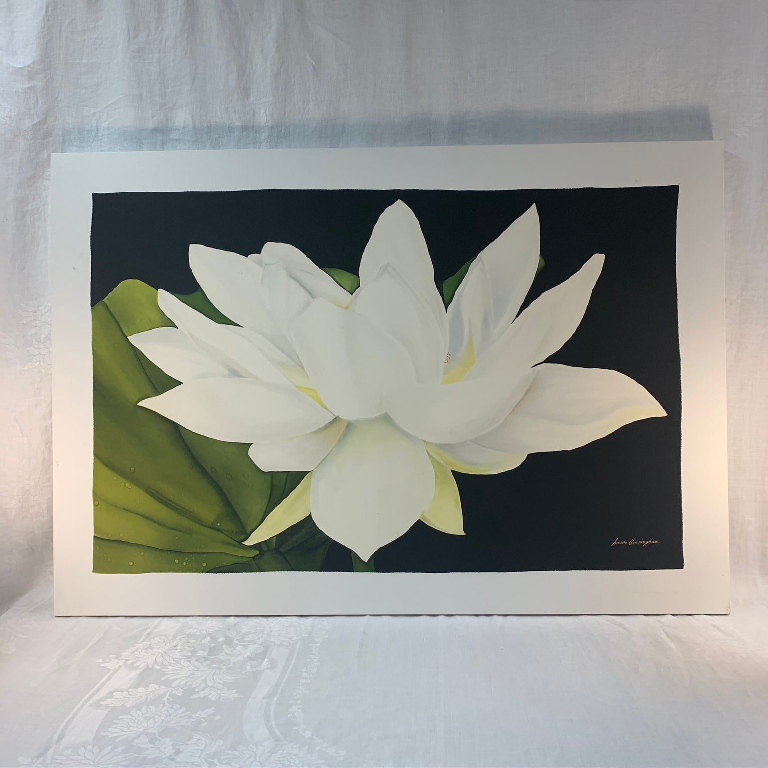 Image of Water Lily