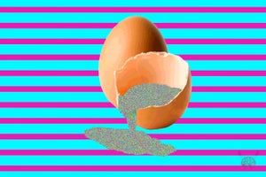 """Image of EGG 2nd """"Tribute"""""""