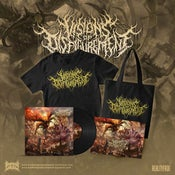 Image of VISIONS OF DISFIGUREMENT-AEONS OF MISERY VINYL DELUXE