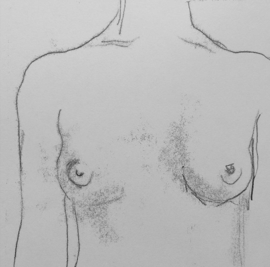 Lock down life drawing No 5