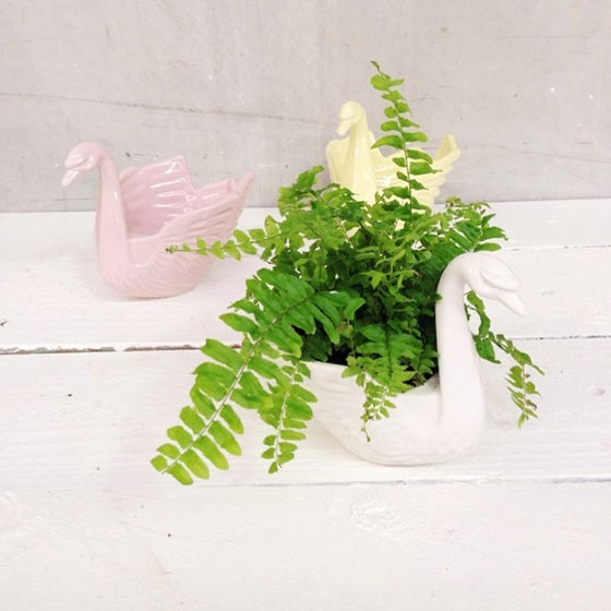 Image of Odette Swan Planter ~ White