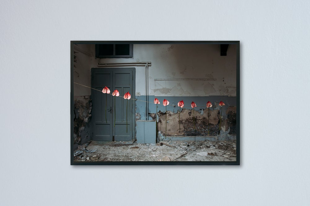 "Image of Flower Room, from the Series ""The Emerging Space"", Ancona 2020"