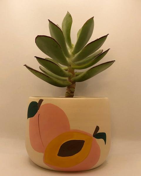 Image of Peach Planter