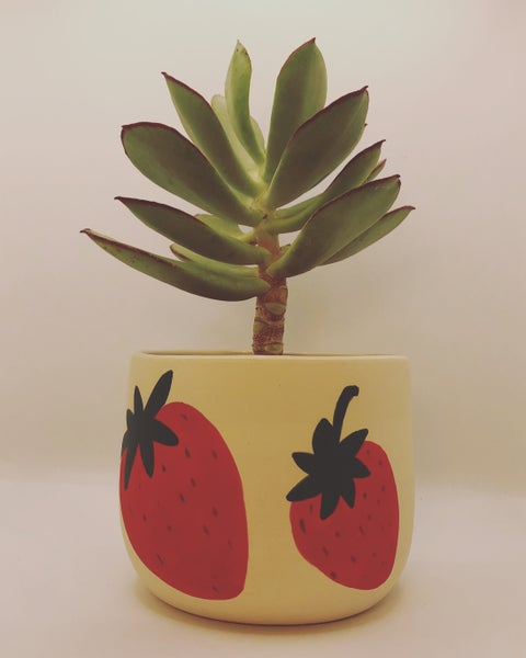 Image of Strawberry Planter