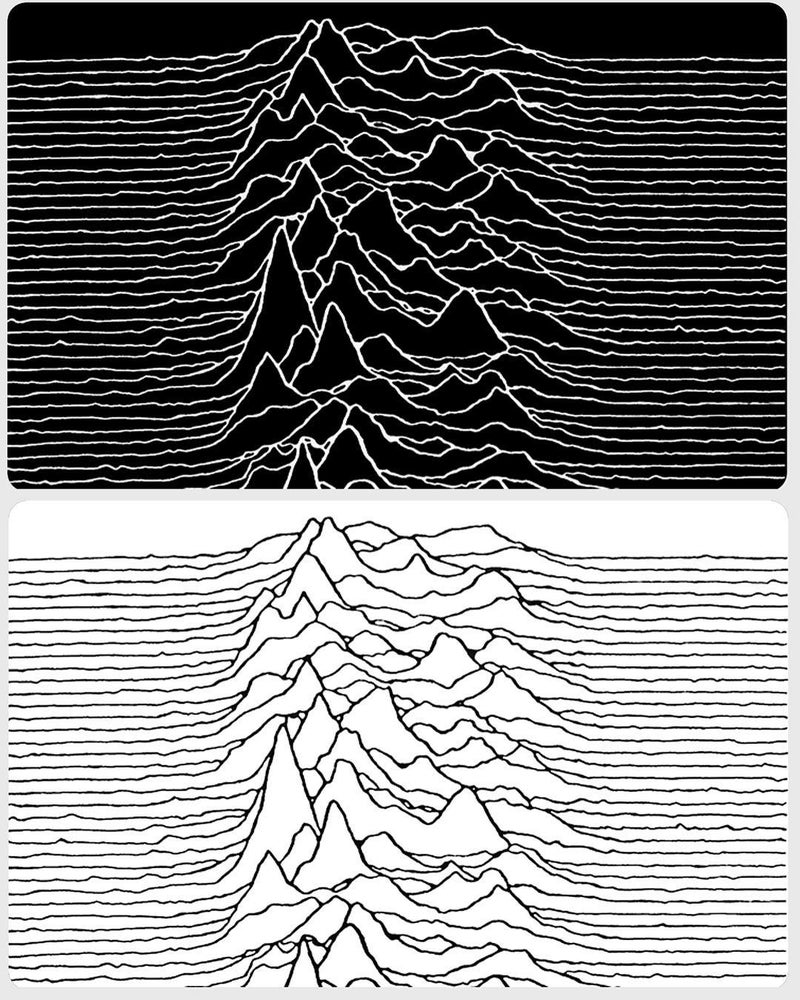 Image of Joy Division Blanks