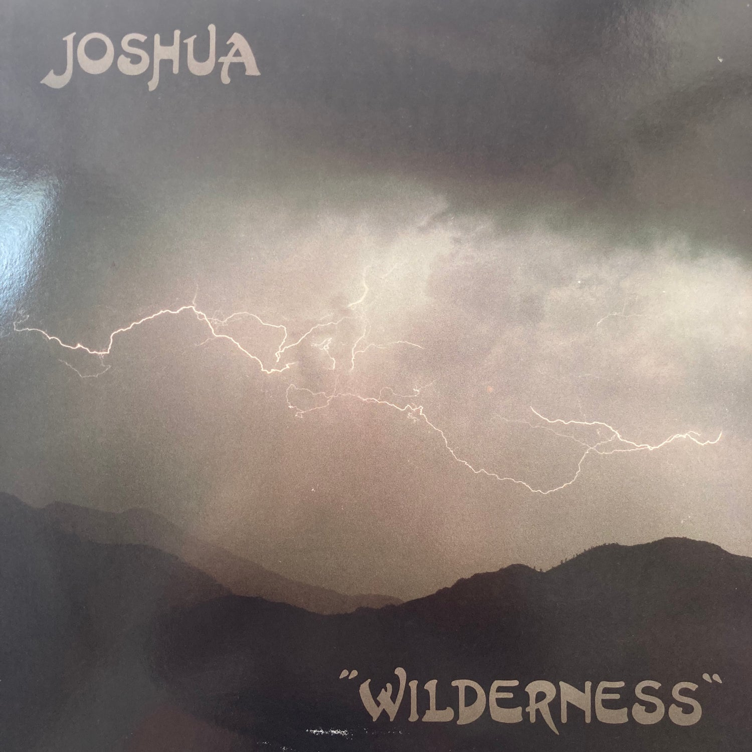 Image of Joshua - Wilderness