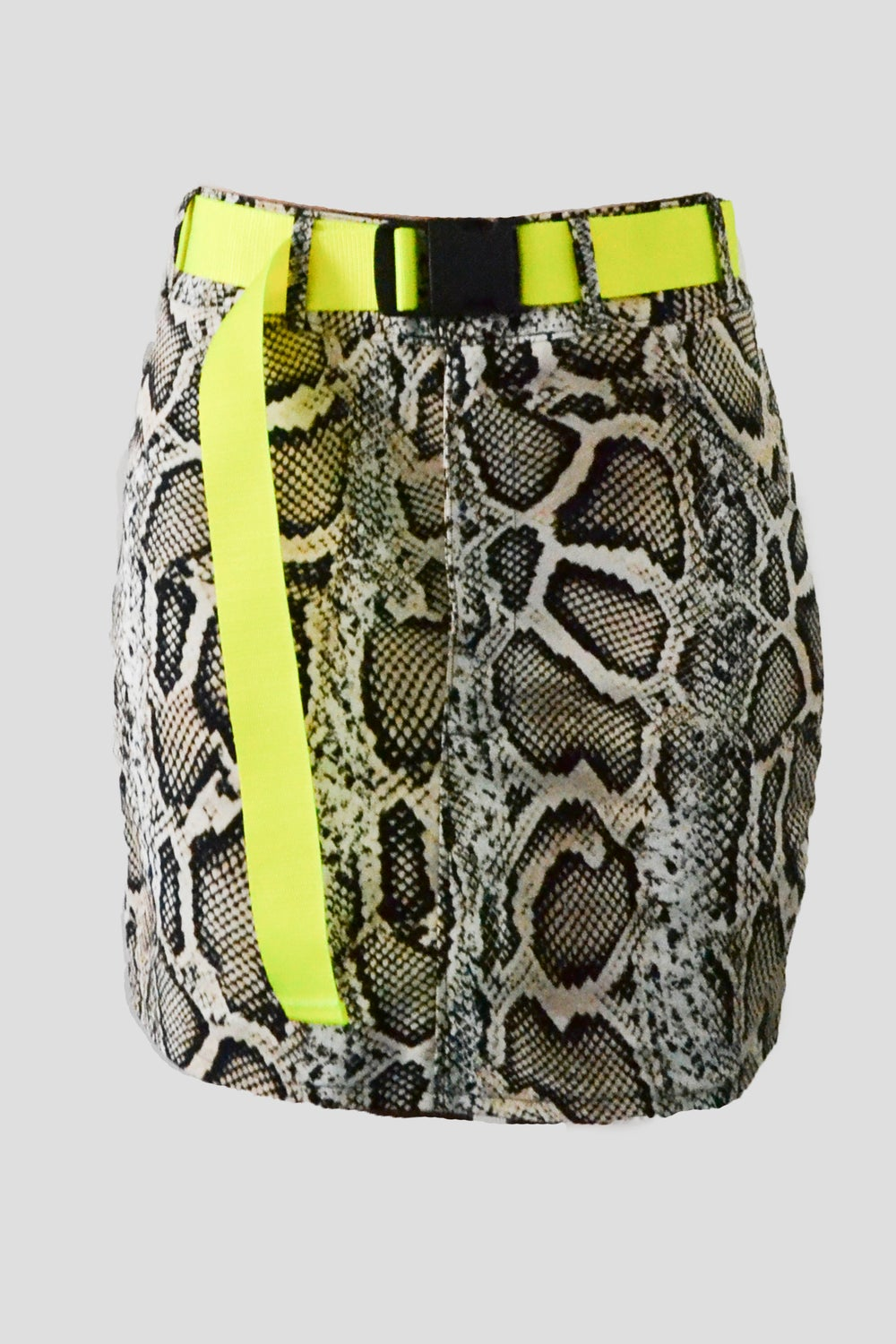 Image of Snake Skirt