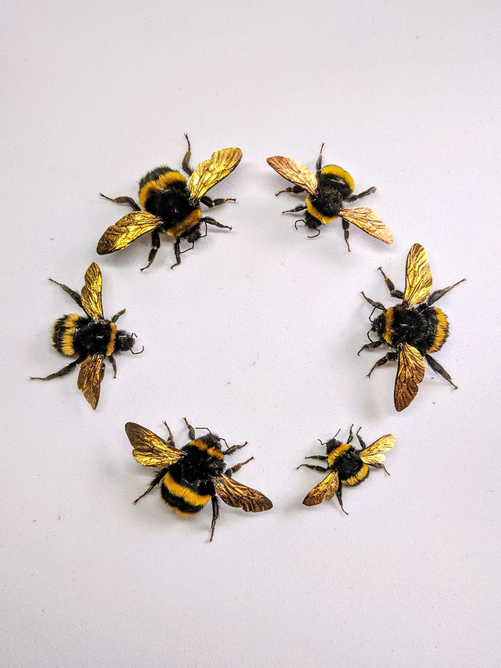 Gilt Bumblebees