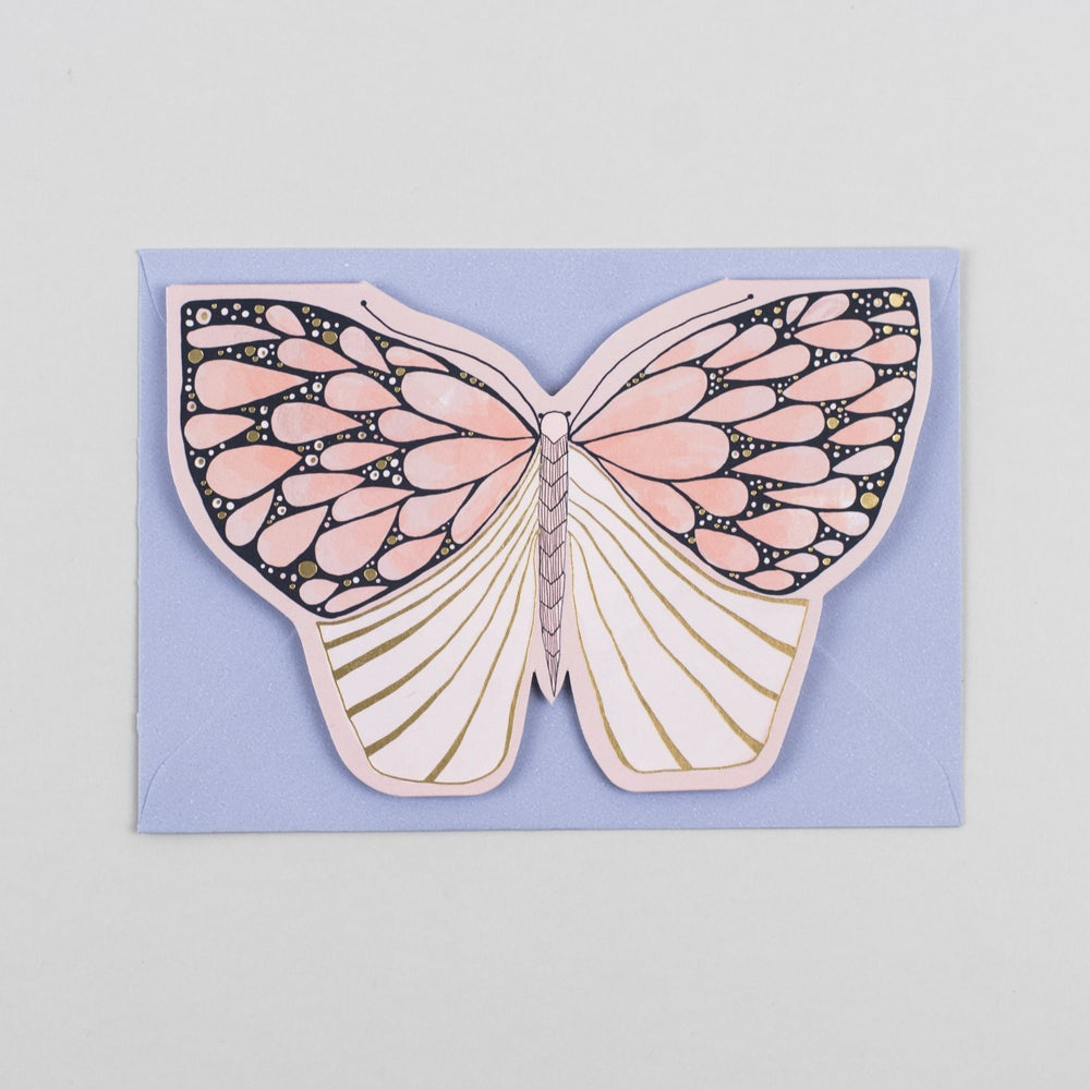 Image of Pink Moth