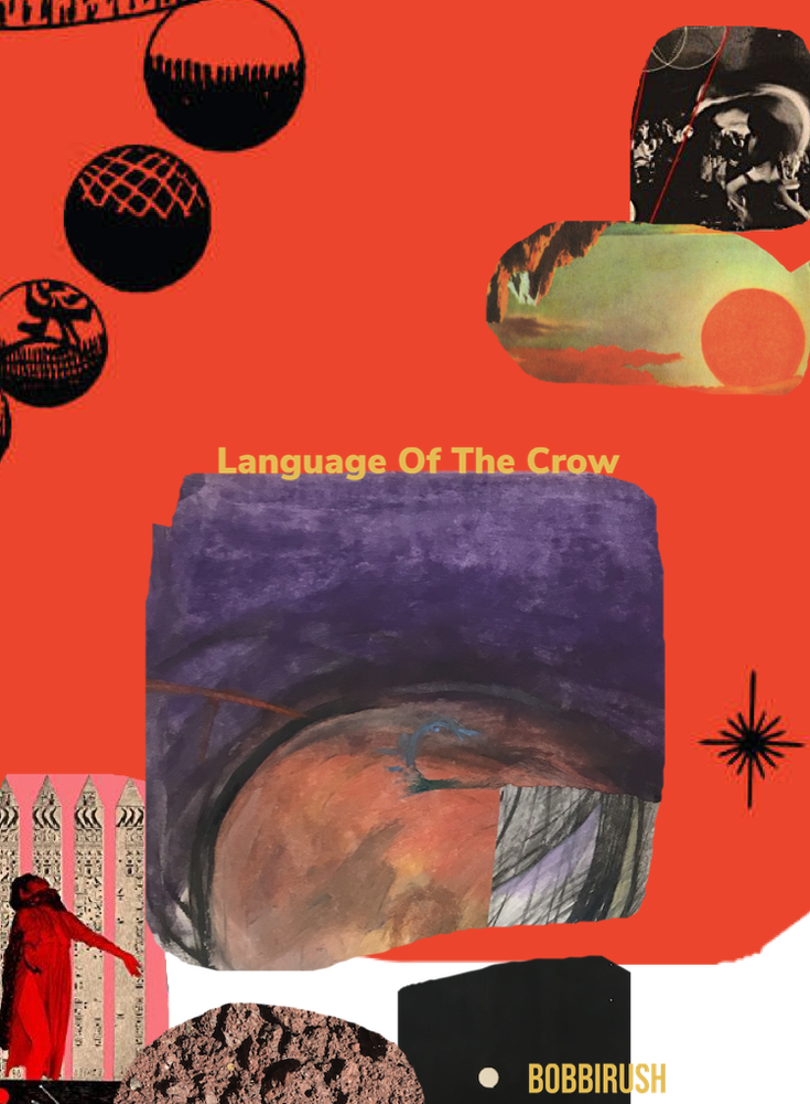 Image of Language Of The Crow  (Pdf)