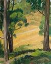 Between the Eucalyptus trees