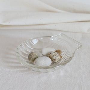 Image of Coquille en verre