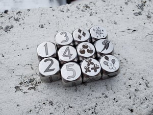 Stainless Steel Dice