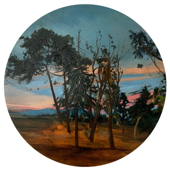 Image of Sarah Walsh | FOREST SUNSET