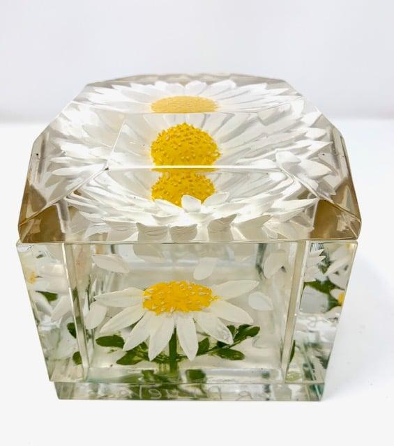 Image of Jumbo Mini Painted Daisy Box