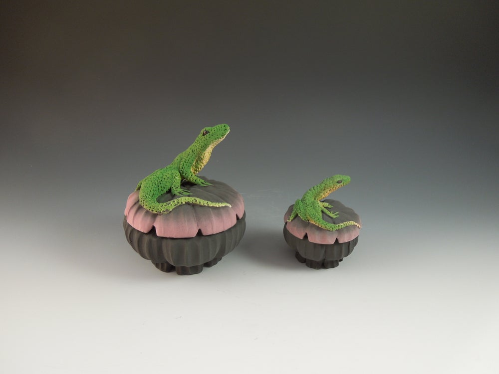 Image of Lizard Boxes