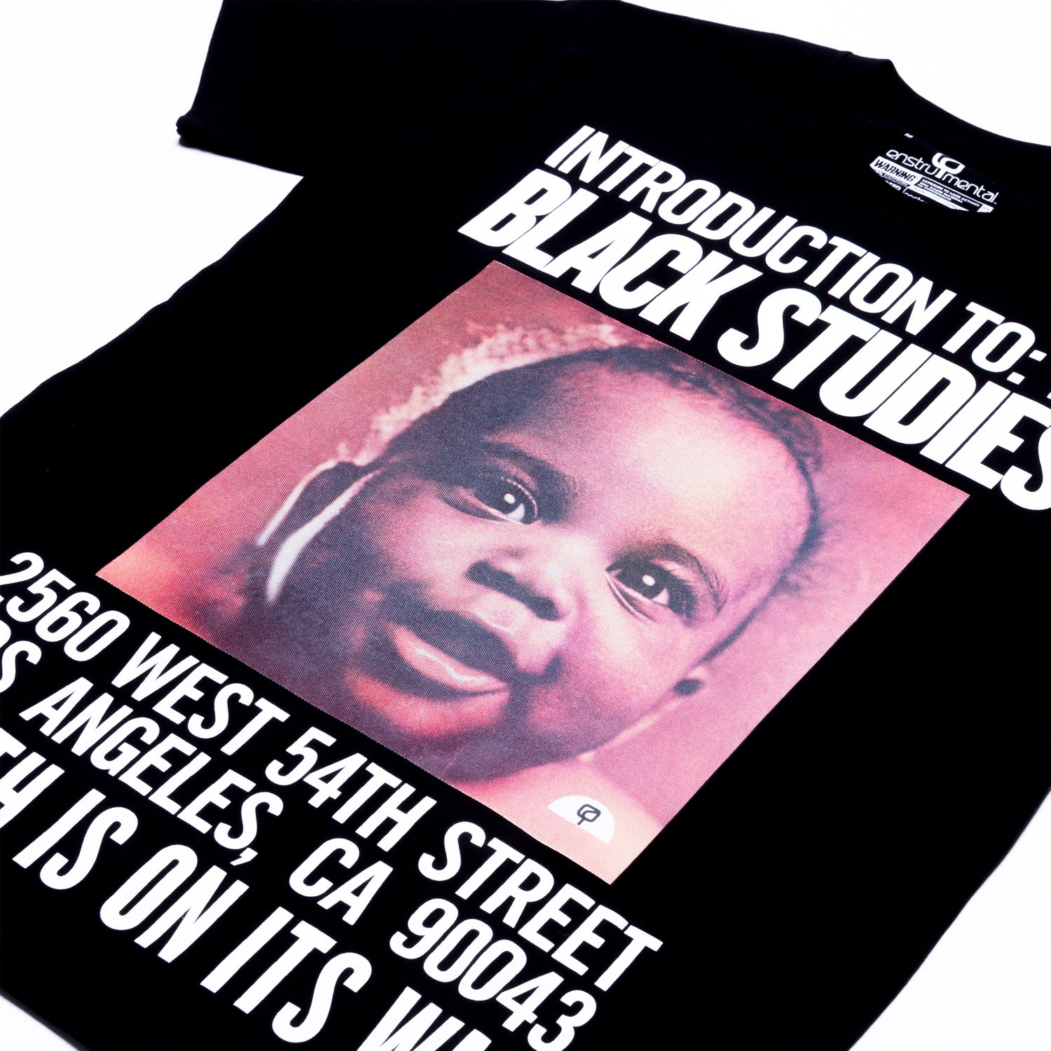 Image of INTRODUCTION TO BLACK STUDIES (SHORT SLEEVE)