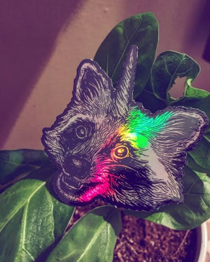 Image of Holographic Raccoonicorn Sticker Pack