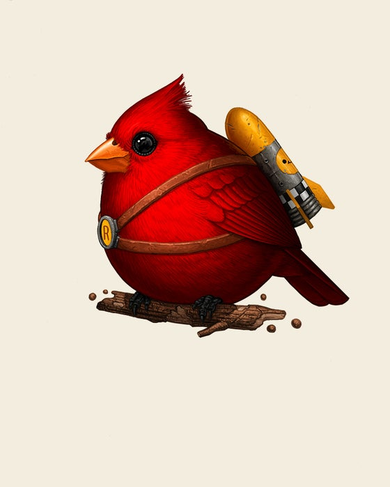 Image of Fat Rocketbird