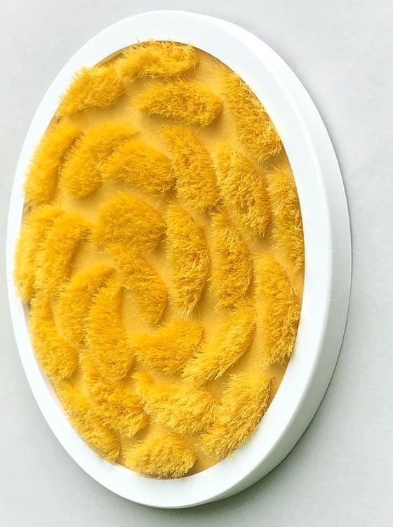 Image of Mini Golden Murmuration multiple