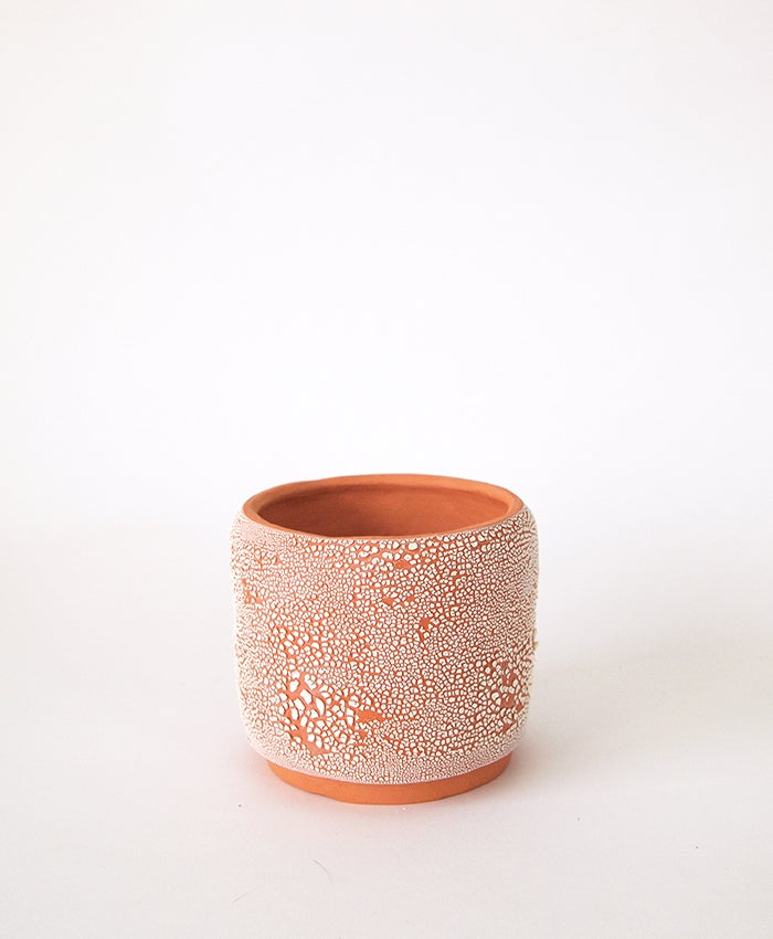 Image of Textured Terracotta Pot 11