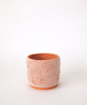 Textured Terracotta Planter no 11