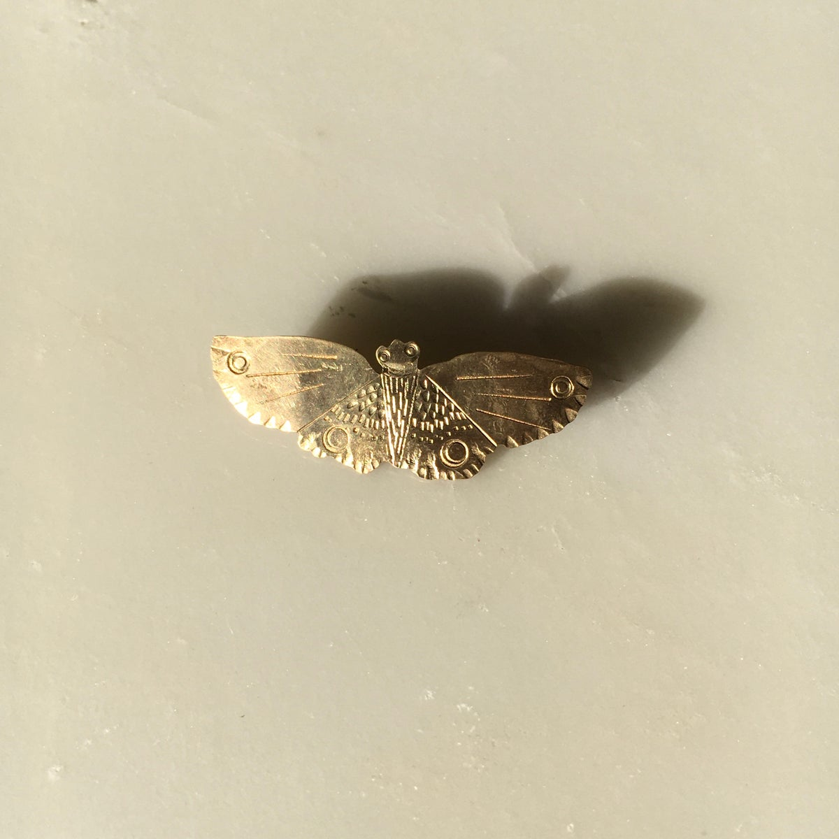 Image of moth pin I