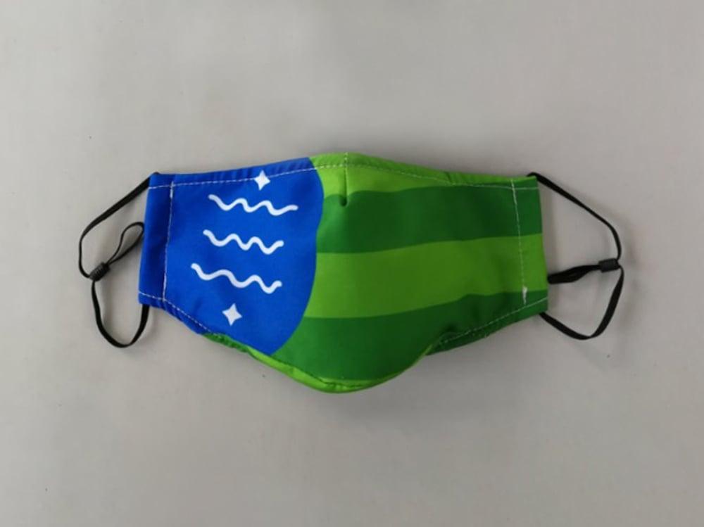 Image of Bellingham Flag Mask