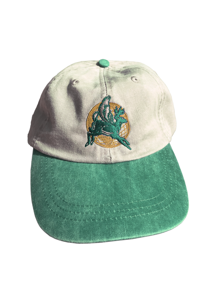 Image of **PRE-ORDER** EXPRESS 6-PANEL CAP