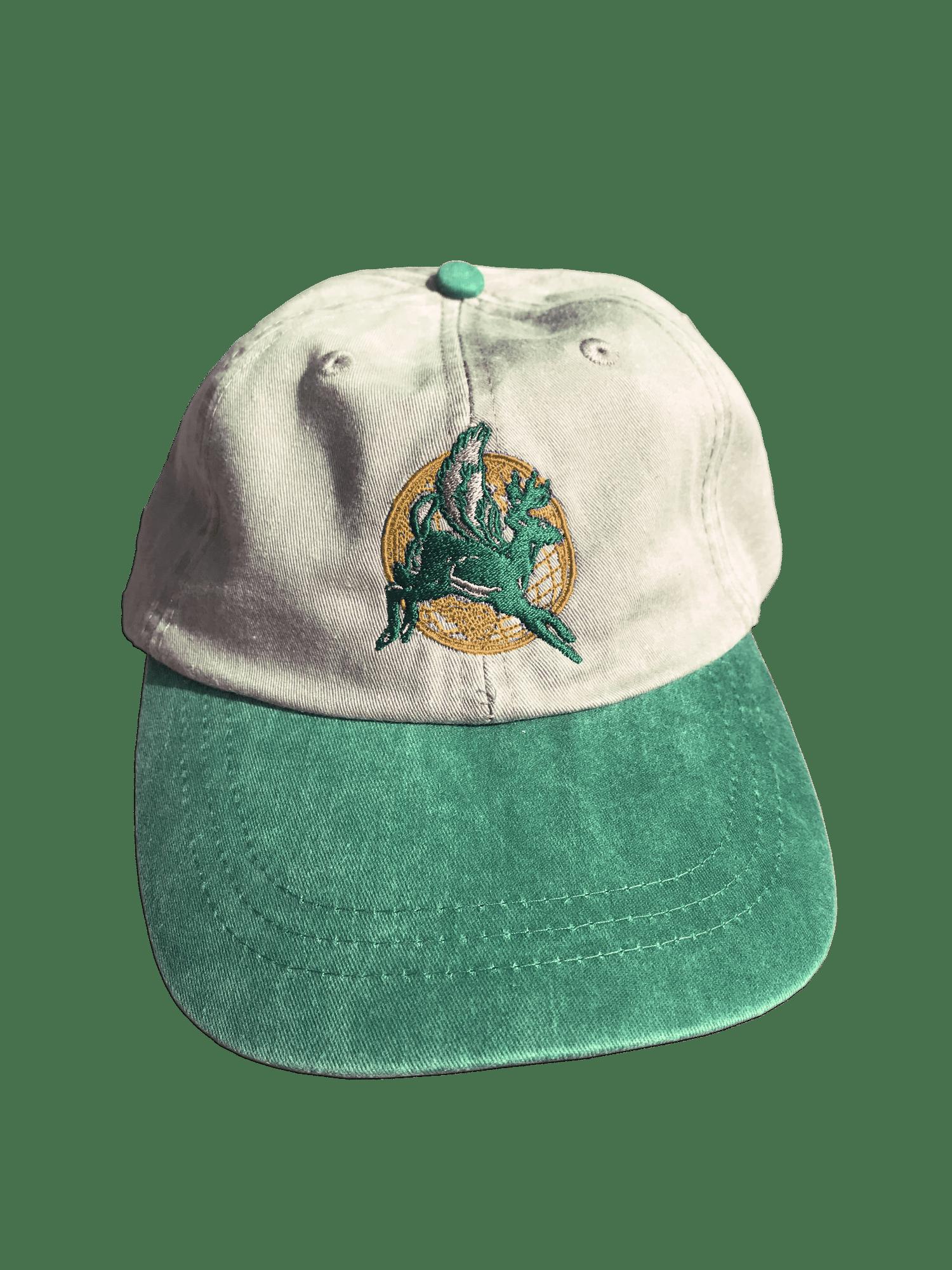 Image of **PRE-ORDER** EXPRESS 6-PANEL CAP