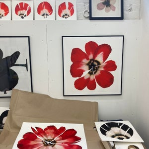 Image of 'Red bloom' 2019, Limited edition print